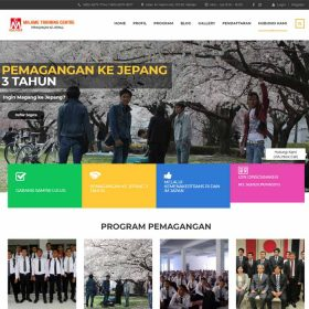 Website Majime Training Centre